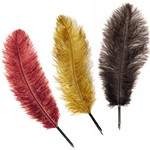 Fancy Ostrich Feather Quill Pen